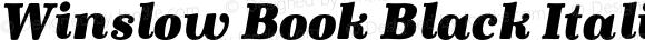 Winslow Book Black Italic