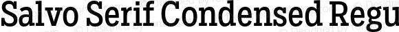 Salvo Serif Condensed Regular