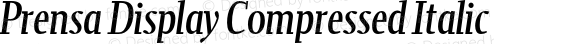Prensa Display Compressed Italic