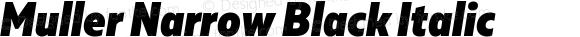 Muller Narrow Black Italic