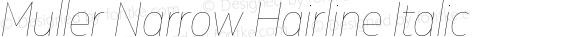 Muller Narrow Hairline Italic