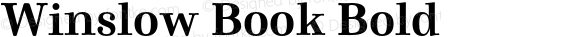 Winslow Book Bold