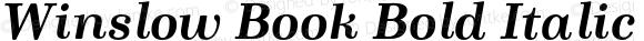 Winslow Book Bold Italic