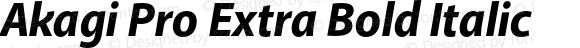 Akagi Pro Extra Bold Italic