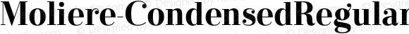 Moliere-CondensedRegular Regular Version 1.000;com.myfonts.easy.eurotypo.moliere.cond-regular.wfkit2.version.3FSc