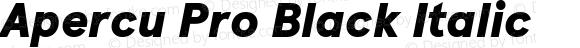 Apercu Pro Black Italic Version 5.002