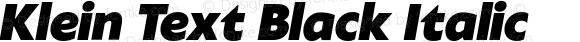 Klein Text Black Italic