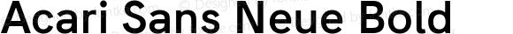Acari Sans Neue Bold