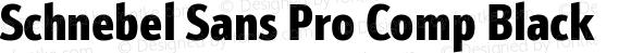 Schnebel Sans Pro Comp Black