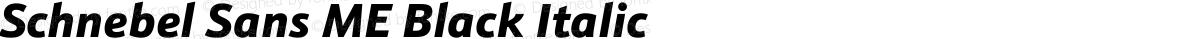 Schnebel Sans ME Black Italic