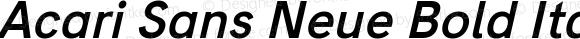 Acari Sans Neue Bold Italic