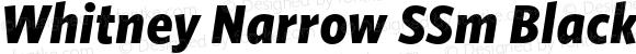 Whitney Narrow SSm Black Italic