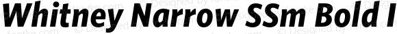 Whitney Narrow SSm Bold Italic