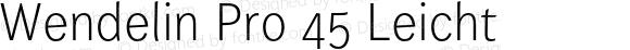 Wendelin Pro 45 Leicht