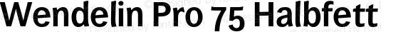 Wendelin Pro 75 Halbfett