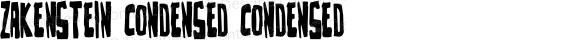 Zakenstein Condensed Condensed