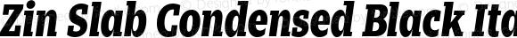 Zin Slab Condensed Black Italic