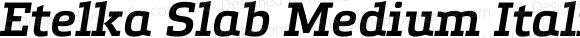 Etelka Slab Medium Italic