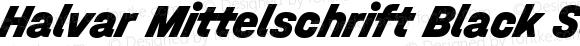 Halvar Mittelschrift Black SuperSlanted