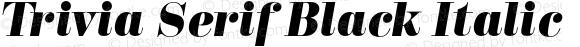 Trivia Serif Black Italic