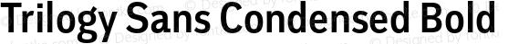 Trilogy Sans Condensed Bold