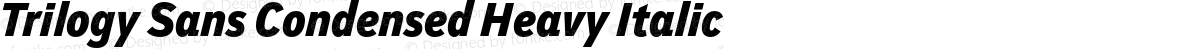 Trilogy Sans Condensed Heavy Italic