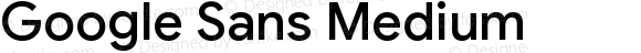 Google Sans Medium Version 1.028