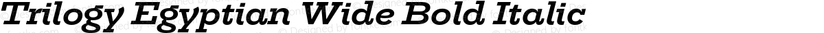 Trilogy Egyptian Wide Bold Italic