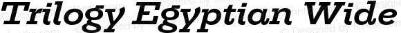 Trilogy Egyptian Wide Bold Italic