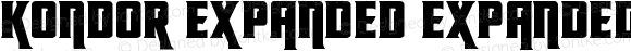 Kondor Expanded Expanded