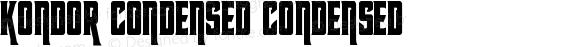 Kondor Condensed Condensed