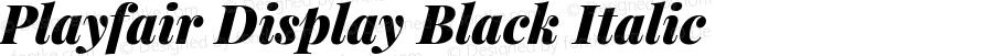 Playfair Display Black Italic