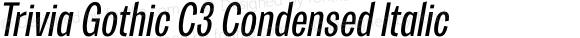 Trivia Gothic C3 Condensed Italic