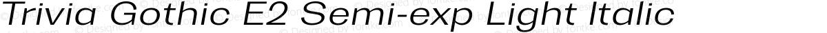 Trivia Gothic E2 Semi-exp Light Italic