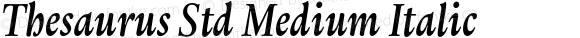 Thesaurus Std Medium Italic
