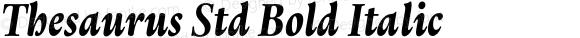 Thesaurus Std Bold Italic