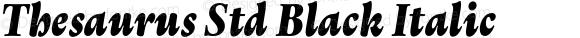 Thesaurus Std Black Italic