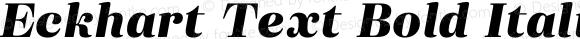 Eckhart Text Bold Italic