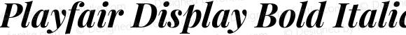 Playfair Display Bold Italic
