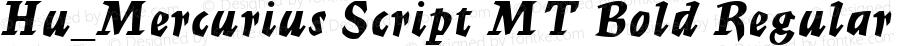Hu_Mercurius Script MT Bold Regular 1.0, Rev. 1.65  1997.06.07