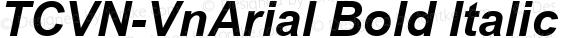 TCVN-VnArial Bold Italic