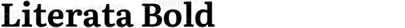 Literata Bold