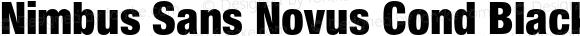 Nimbus Sans Novus Cond Black