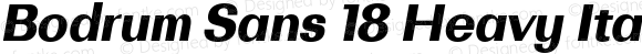Bodrum Sans 18 Heavy Italic