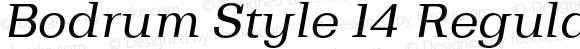 Bodrum Style 14 Regular Italic