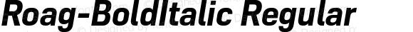 Roag W05 Bold Italic