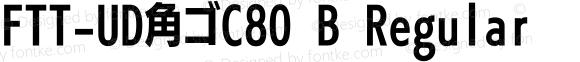 FTT-UD角ゴC80 B