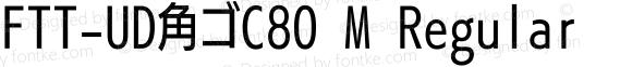 FTT-UD角ゴC80 M