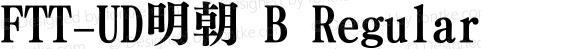 FTT-UD明朝 B