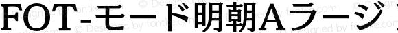 FOT-モード明朝Aラージ ProN